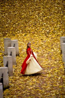 Free Lady In Autumn Forest Royalty Free Stock Photo - 9744445