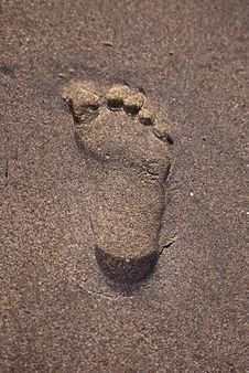 Free Sandy Footprint Royalty Free Stock Images - 9744679