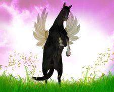 Free Flying Black Stallion Stock Photos - 9744763