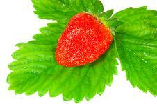 Free Strawberry Royalty Free Stock Photo - 9745405
