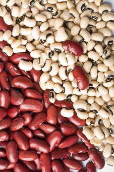 Free Red And White Haricot Beans Royalty Free Stock Photos - 9745788
