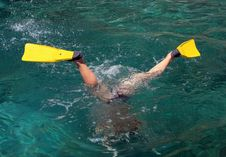Free Diving Stock Image - 9746441