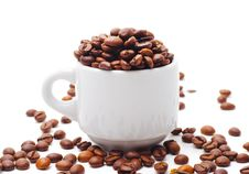 Free Coffee Seed And Cup Stock Photography - 9746642