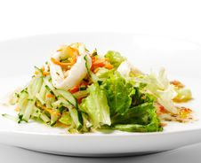 Free Seafood Salad Royalty Free Stock Image - 9747776