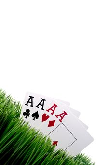 Four Ace Playing Cards In Grass Stock Image