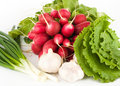 Free Spring Onions, Garlic, Lettuce And Radish Stock Photography - 9754452