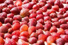Free Strawberry Cake Stock Photos - 9750313