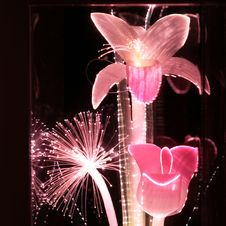 Free Pink Fiber Optic Flowers Stock Images - 9750724