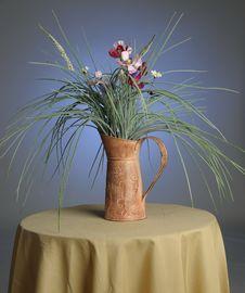Decorative Plant Stock Image
