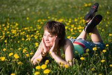 Free Dandelions Glade Stock Image - 9754621