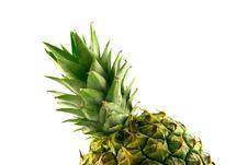 Free Pineapple Top Stock Photo - 9754800