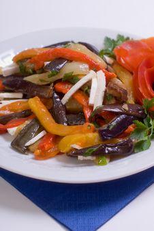 Free Vegetable Ragout Stock Photo - 9755610