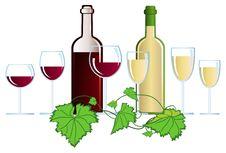 Free Vineyard Stock Image - 9756441