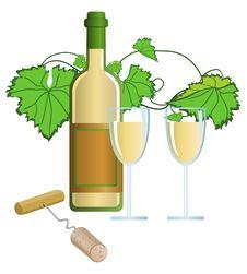 Free Vineyard Stock Image - 9756481