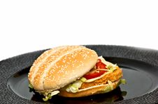 Free Chicken Burger Royalty Free Stock Photography - 9756537