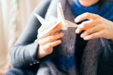 Free Origami Bird In Hands Stock Photography - 97537802