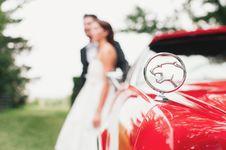 Free Jaguar Wedding Stock Photos - 97538173