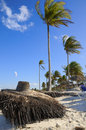 Free Tropical Beach With Coconuts Royalty Free Stock Images - 9763289