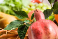 Free Fruits And Vegetables Stock Photos - 9767823