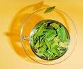 Free Freshness Stock Image - 9768491