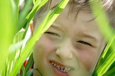 Free Boy Stock Photos - 9760173