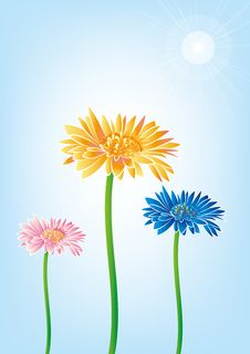 Free Flower Royalty Free Stock Images - 9760659
