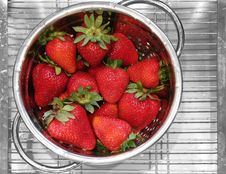 Free Strawberries Royalty Free Stock Photography - 9761657