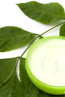 Free Face Cream With Green Leaf Stock Photo - 9761680