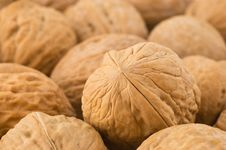 Free Background Of Walnuts. Royalty Free Stock Photos - 9762008