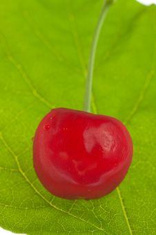 Free Sweet Cherry Stock Image - 9762961
