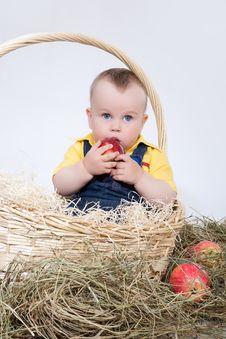 Free Boy In Basket Royalty Free Stock Image - 9764026