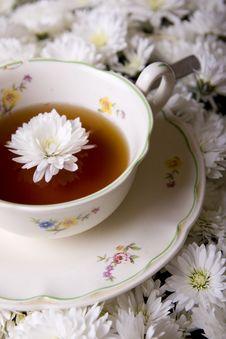 Free Tea Royalty Free Stock Photography - 9766267