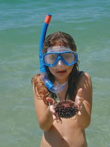 Free Girl With Sea Urchin Royalty Free Stock Photo - 9766635