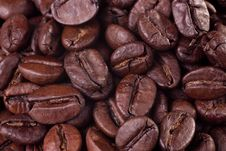 Free Coffee Beans Royalty Free Stock Photos - 9766828