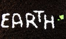 Free Text Earth With Plant Stock Image - 9767161