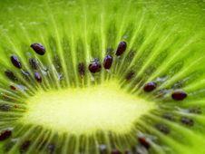 Free A Fresh Sliced Kiwi Royalty Free Stock Photo - 9767775