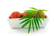 Free Three Lychee In A Dish Royalty Free Stock Photo - 9769955