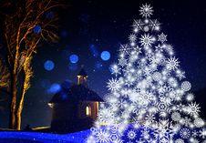 Free Blue, Christmas Tree, Nature, Winter Stock Image - 97605541