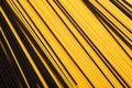 Free Black And Yellow Pasta Royalty Free Stock Photos - 9772588
