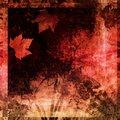 Free Grungy Autumn Frame Stock Image - 9773911