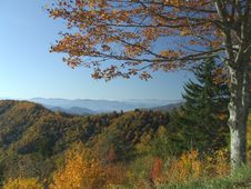 Free Smoky Mountain, Newfound Gap Royalty Free Stock Image - 9770166