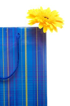 Free Paper Bag For Gifts Royalty Free Stock Photography - 9770667