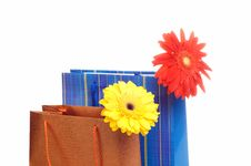 Two Paper Bags For Gifts Stock Photography