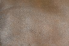 Free Leather Texture Stock Images - 9771844