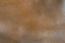 Free Leather Texture Royalty Free Stock Photos - 9771888