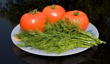 Tomato And Dill Stock Image