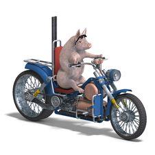 Free Piglet Royalty Free Stock Image - 9773726