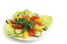 Free Spring S Salad Royalty Free Stock Photography - 9777057