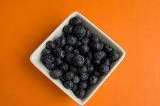Free Blueberries In Square White Bowl Stock Photo - 9777070
