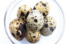 Free Quail Eggs In Glass Bowl Stock Photos - 9777213